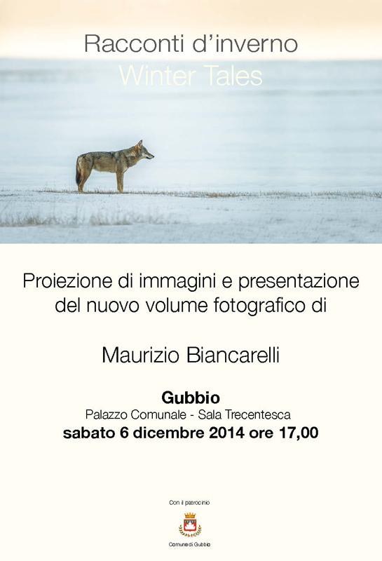 Maurizio Biancarelli: Racconti d'inverno - Winter Tales. Gubbio, Palazzo Comunale - Sala Trecentesca, sabato 6 dicembre 2014 ore 17,00.